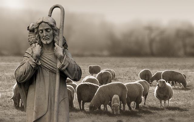 Religion Faith Shepherd Sch%C%Afer